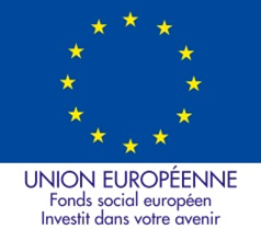 Logo fse 2